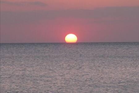 Grapefruit Getaway at the Beach - Napels