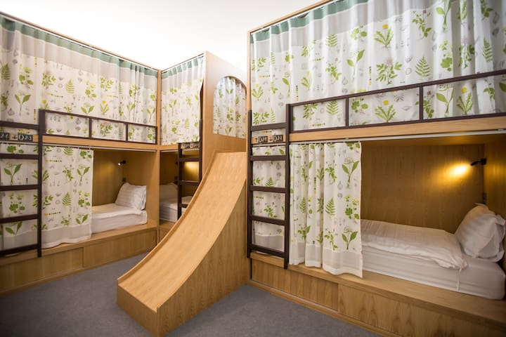 Mixed Dorm Room (6beds/room)