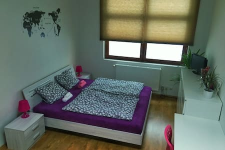 Charming spacious room near centre! - Apartment