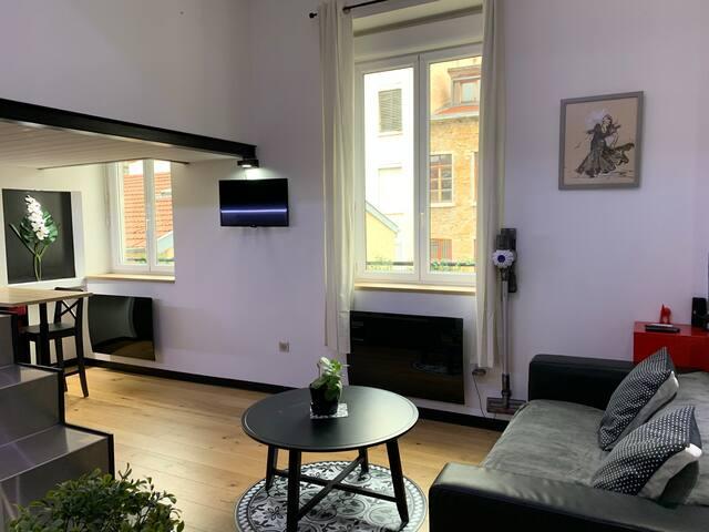 Appartement canut, entièrement rénové