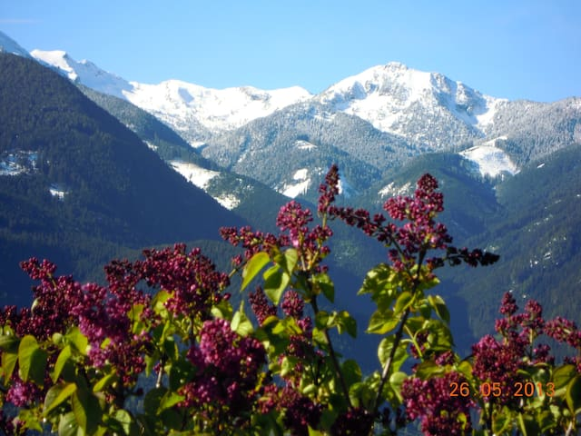 Holidays in Fiemme Valley