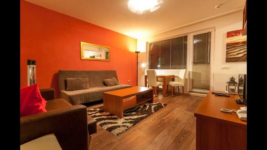 1 Bed Apartment in Bansko Sleeps 4 - Bansko - Lägenhet