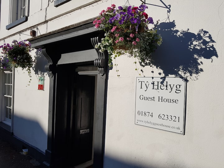 Ty Helyg Guest House Twin Room B&B