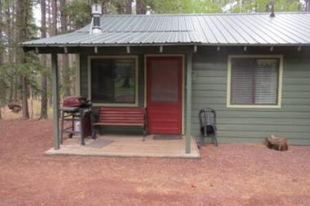 Aspen Cabin 1