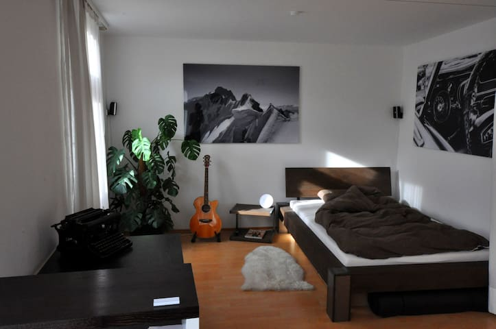 Cozy and stylish 1-room apartment, central Munich