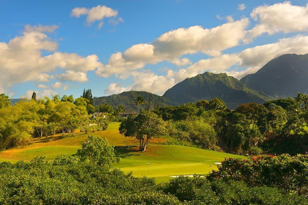 Hanalei bay villa 30 case in affitto a princeville for Lavatrice stand alone