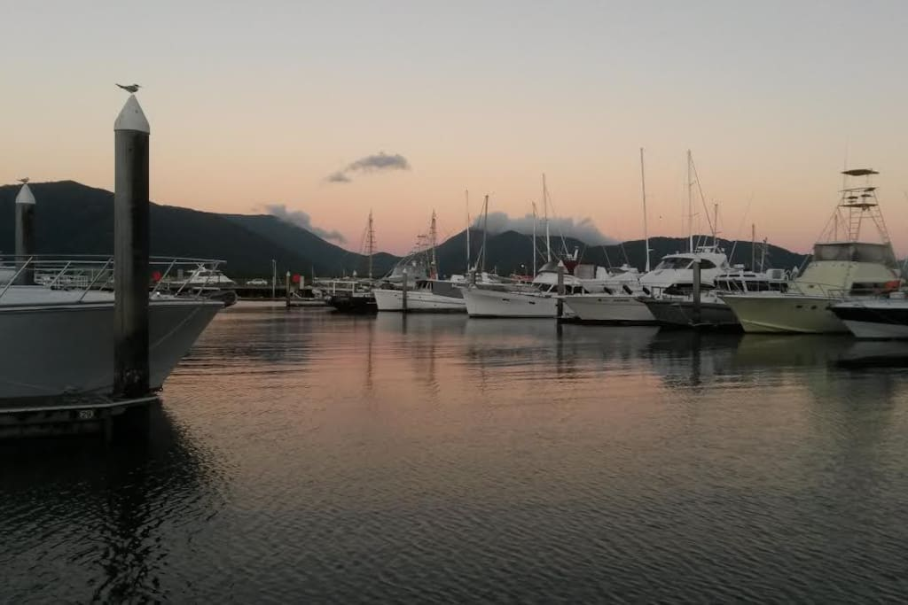The marina has the best sunsets you can imagine
