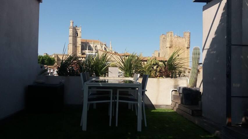 Grand appartement avec terrasse en cœur de ville