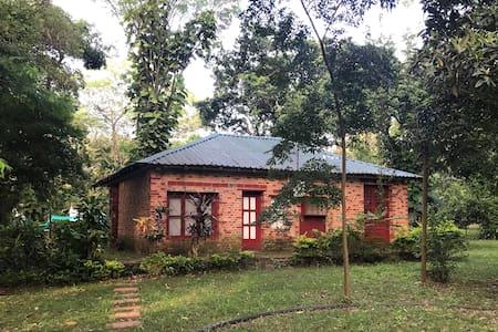 Rancho Urbano en la Selva! Oasis magico y acogedor