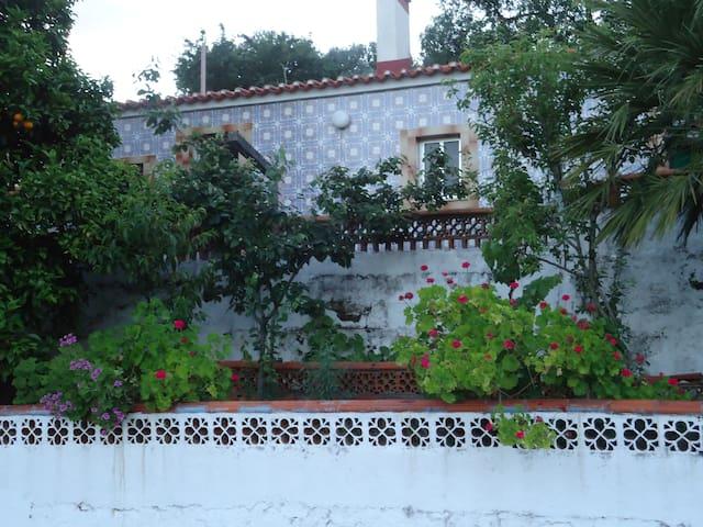 Casa Vila Nova da Barquinha 30min de FATIMA - Moita do Norte - บ้าน