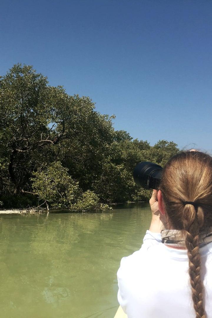 Fotografiando a un Gavilán Pescador