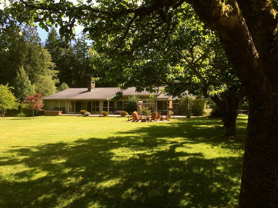 Spacious house, lawn and orchard to relax in!