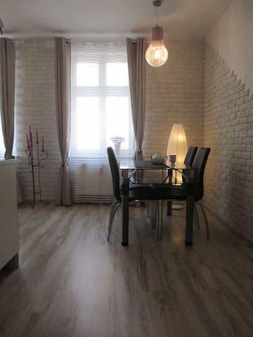 Comfortable apartment in a historical building - Poznań - Leilighet