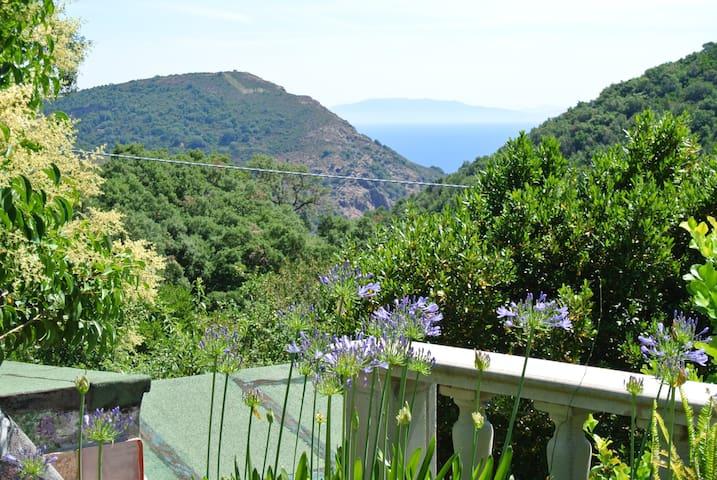 San Felo una vacanza nel verde.