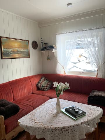 Small cozy living room with fold out sofa