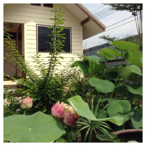 MAMA GARDEN - Bangkok - Bed & Breakfast