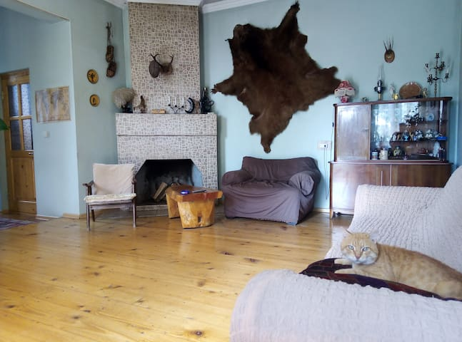 общая гостиная- shared lounge
