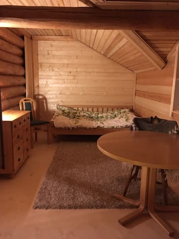 Quiet log home for cat and nature friendly guests