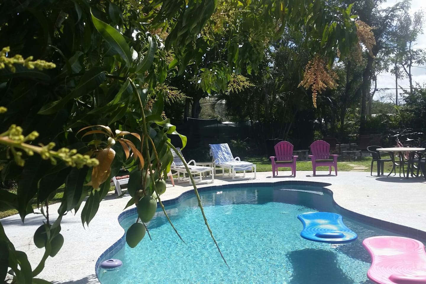 Private Pool under the Mango Tree.