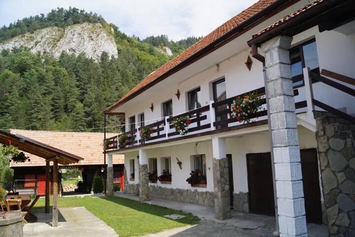 Guest House Piatra Craiului room 3