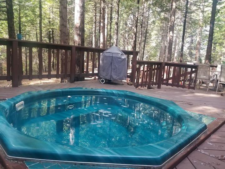 Ponderosa Cabin Spa Getaway