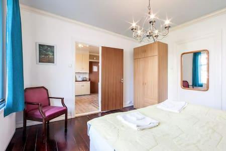 Central private apartment - Reykjavík - Wohnung