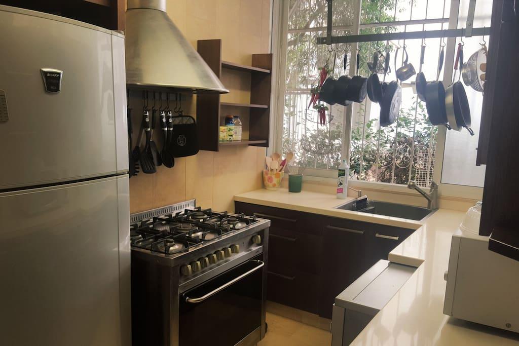 Fully accessorized modern kitchen