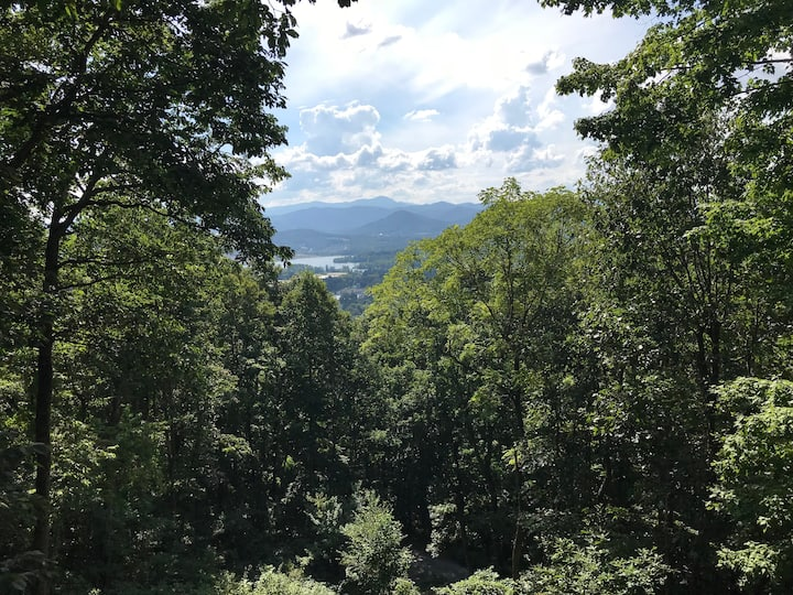 Secluded Mountain Views In Asheville
