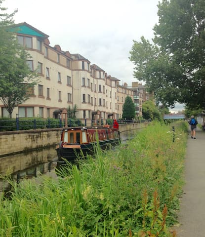 Local canal walk with barges and wildlife