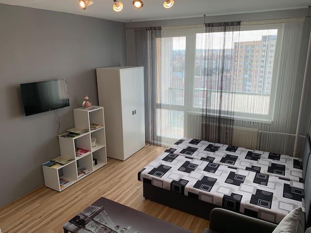 Apartman PARTIZAN - отличная квартира в самом центре Кошице