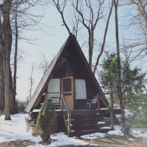 AFrame Cabin on 128 Acre Forest Park and Reserve