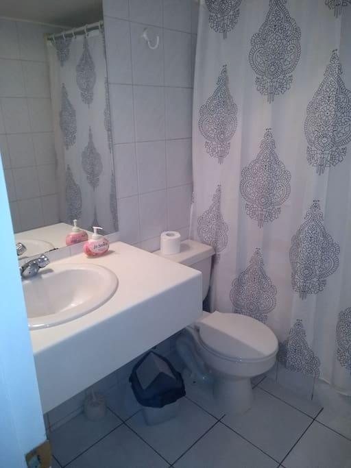 Baño pieza principal.