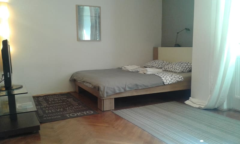 Nice apartment inside city center - Zagreb