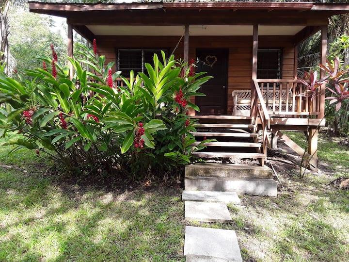 Rainforest Cabin Getaway