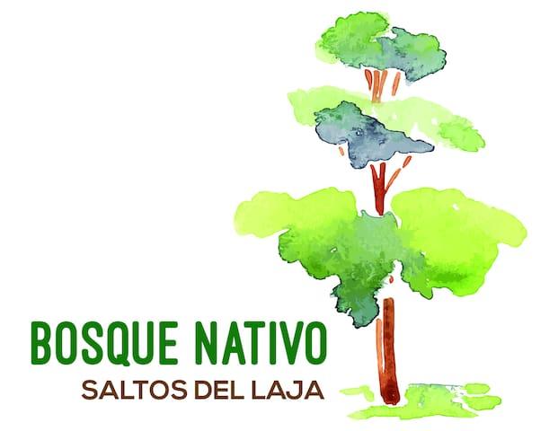Cabañas Bosque Nativo - Apartamento Boldo
