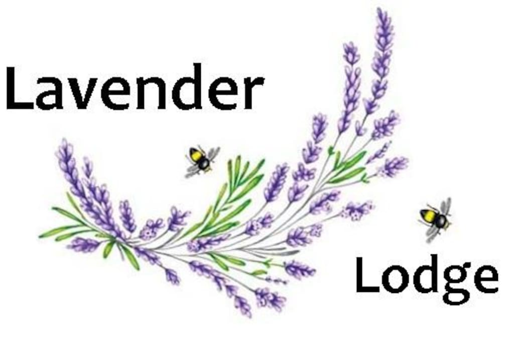 Welcome to Lavender Lodge!