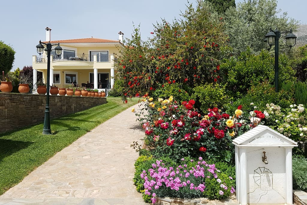 Welcome to Villa Elena