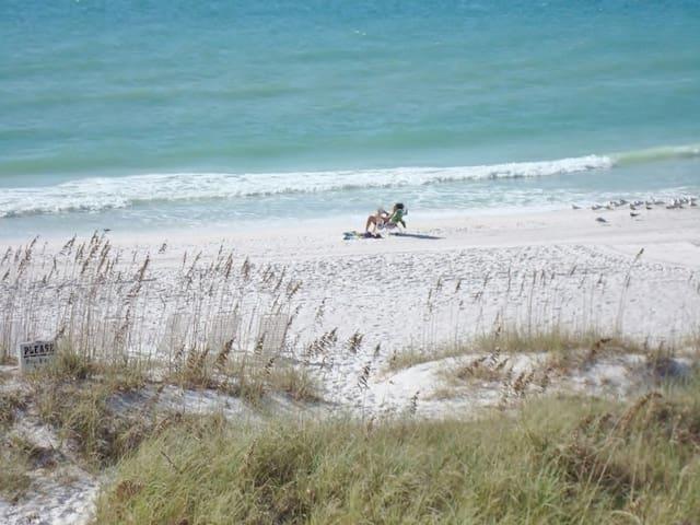 Anna Maria Island Getaway (Beachfront & Dolphins)