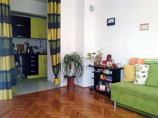 Apartment in the center of Subotica.