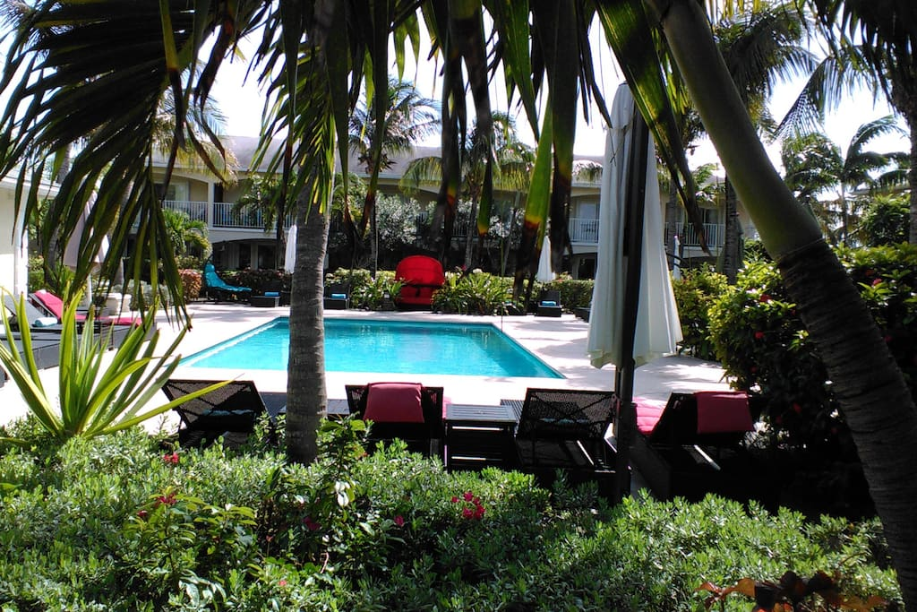 A view of the pool from one of the outdoor patios
