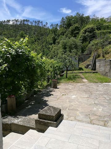 Casa nel verde a 10 minuti dalle Cinque Terre - Puin - Casa