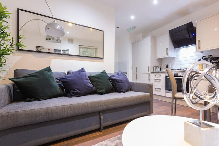 Luxury Three Bedroom Apartment In Central London