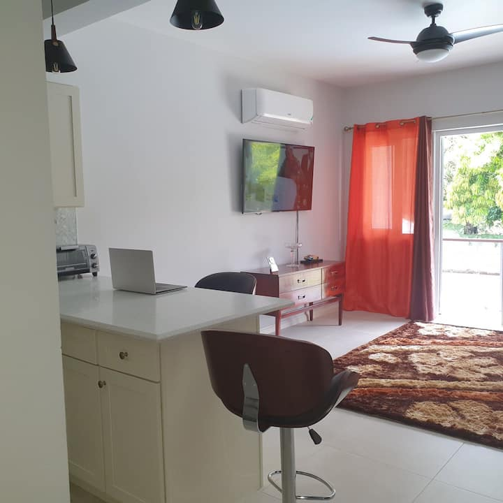 1 Bedroom Apartment in Stony Hill