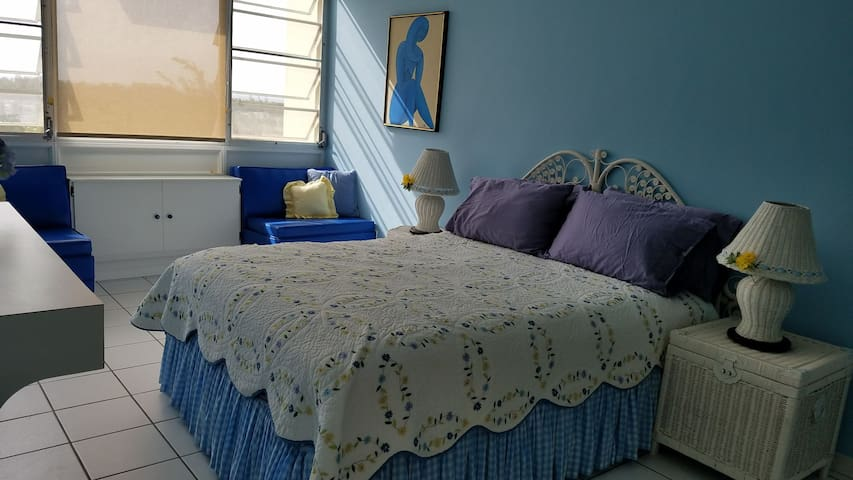 Master bedroom with queen size bed, AC and ceiling fan