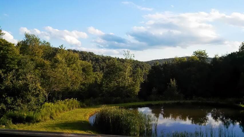 Catskills Mountain Retreat
