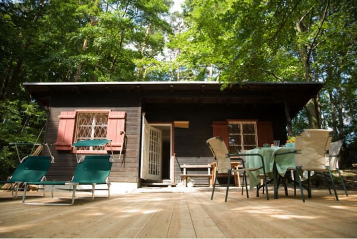 Waldhütte Siegenfeld - Siegenfeld - Cabin
