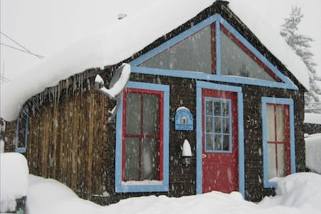 Cozy Cabin in the Heart of it All - 克雷斯特德比特(Crested Butte)