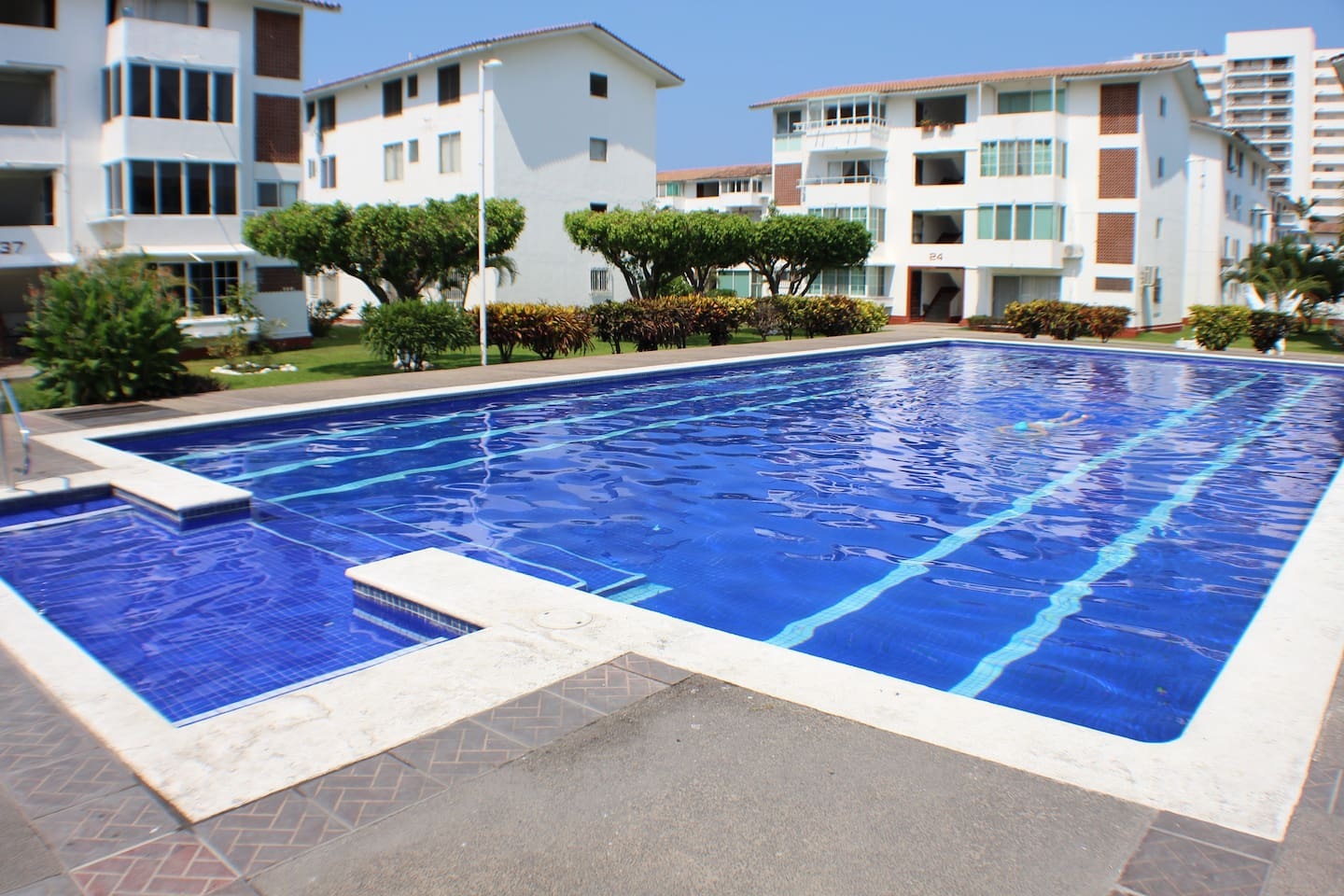 Huge common pool with shallow area for kids or adult relaxing area
