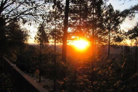 Organic Gardens & Beautiful Views! - Grass Valley