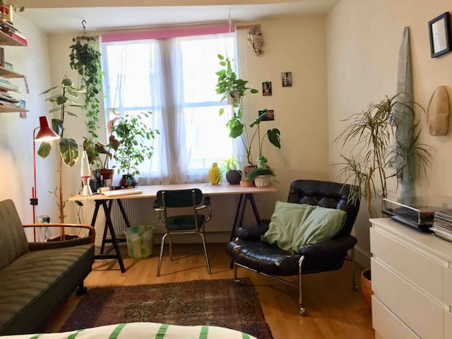 Double Room in shared house in Hackney Central